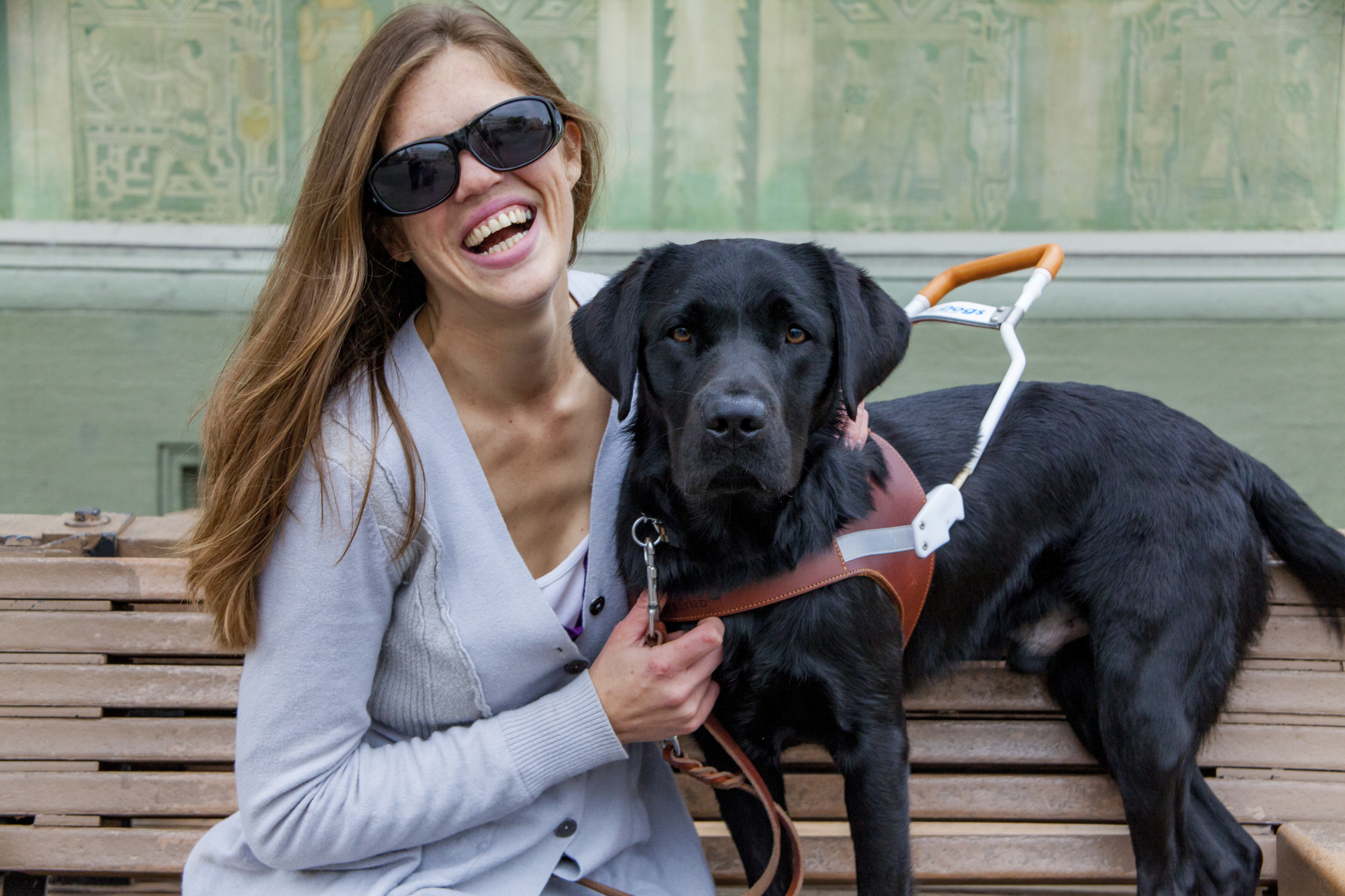 Guide dogs HGG